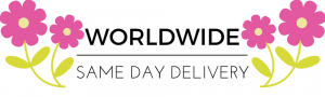 Worldwide Same Day Delivery